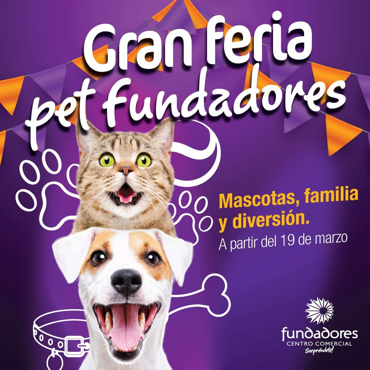 PET FUNDADORES