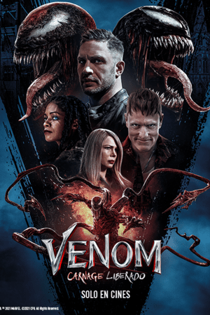 VNM2-2-Poster
